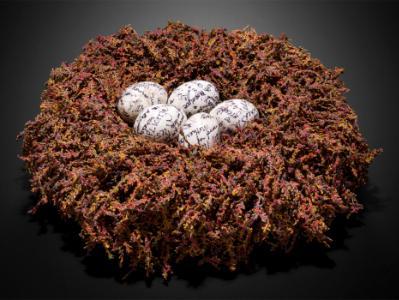 Sanctuary: Nest for Many