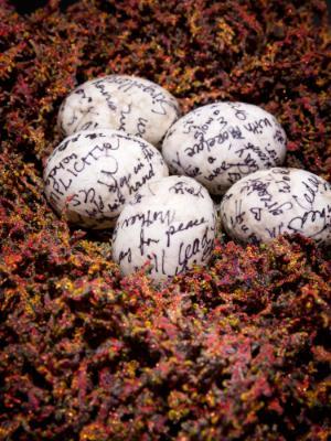 Sanctuary: Nest For Many (Detail)