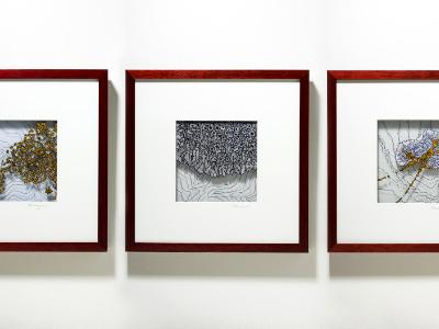 As triptych (L to R: Stanza 607, Stanza 833, Stanza 11)